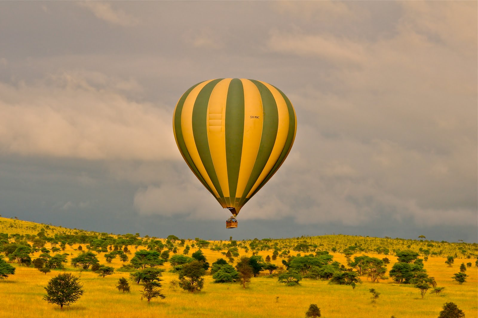 Balloon safaris in Serengeti National Park and Masai Mara